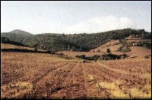 terroir donaro