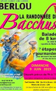 bacafficheverte2018